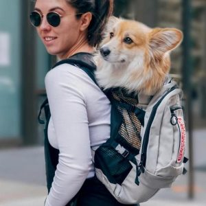 Factors to Consider When Buying a Dog Carrier Backpack