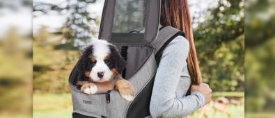 Ytonet Dog Backpack