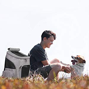 ytonet dog carrier