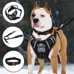 10 TIANYAO Dog Harness No-Pull Dog