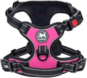3 PoyPet No Pull Dog Harness