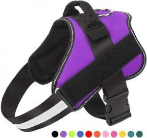 4 Bolux Dog Harness