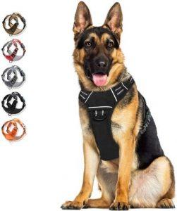 6 WALKTOFINE Dog Harness
