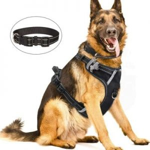 7 WINSEE Dog Harness No Pull