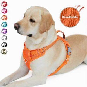 8 BARKBAY No Pull Dog Harness